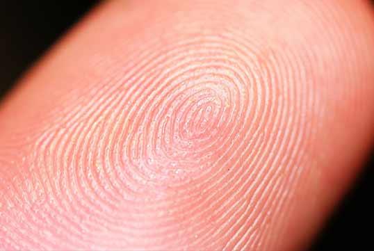Dallas Live Scan Fingerprinting